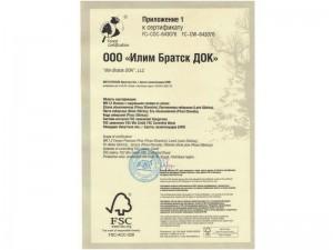 certificate-ilimtimber-07-800x600