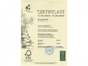 certificate-ilimtimber-08-800x600