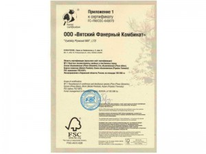 certificate-investlesprom-02-800x600