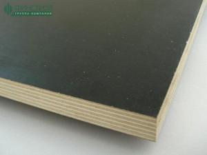 lf-5-800x600